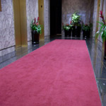 Deluxe Carpet Entrance Mats